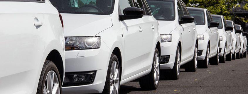 UbiTec Como disminuir el tiempo de expedición y mejorar la eficiencia del despacho de vehiculos Auto blanco, autos, carros,